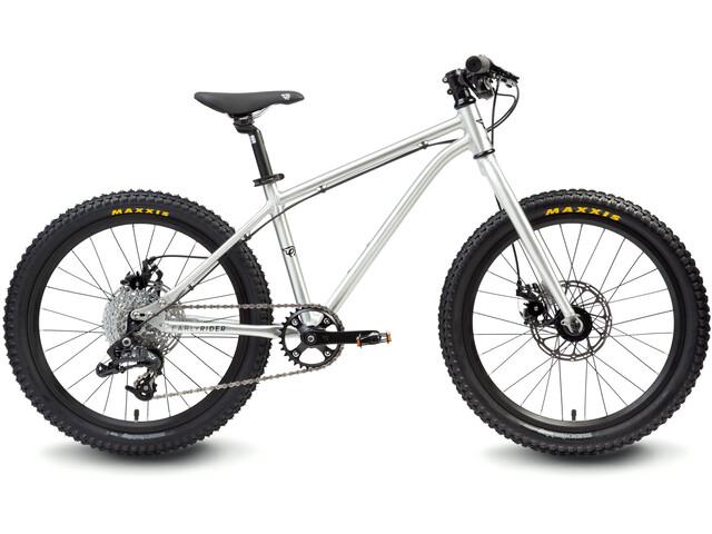 "Early Rider Hellion Trail MTB Hardtail 20"" Kids, brushed aluminum"